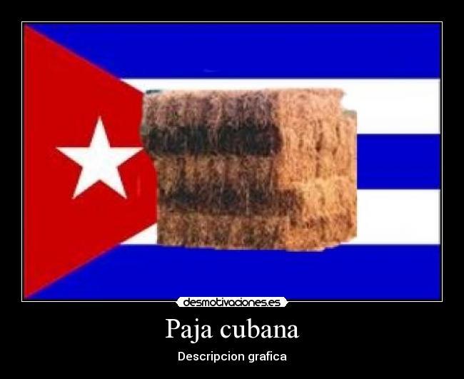 Amistad Paja Cubana En Aviles 3739