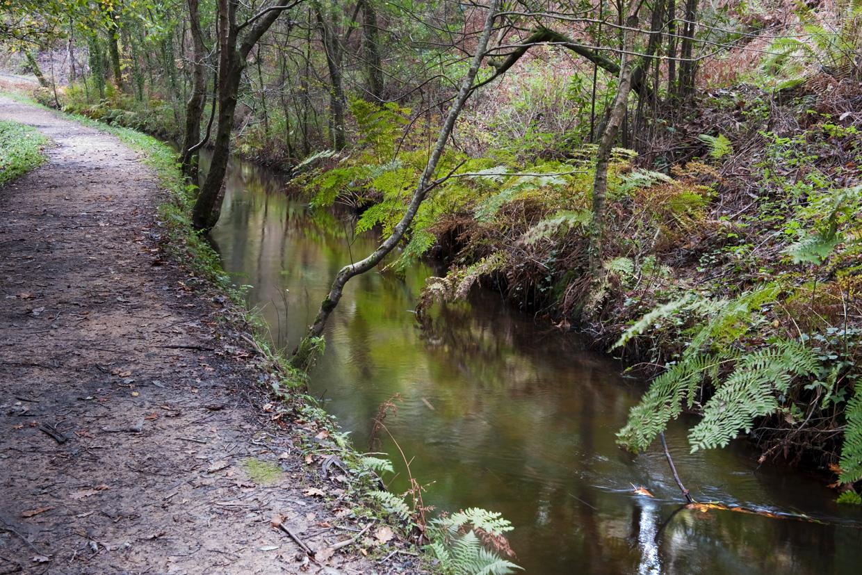 Fotos Wassap En Galicia 4728