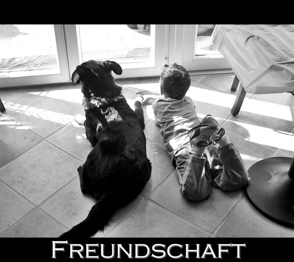Friendship Freundschaft 2608